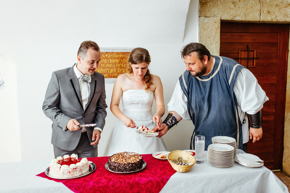 paze-pomaha-s-porcovanim-dortu